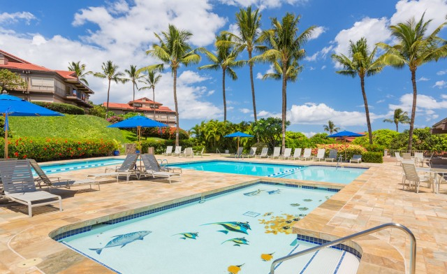 Wailea Point Amenities