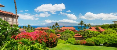 Wailea Point condos for sale 2303