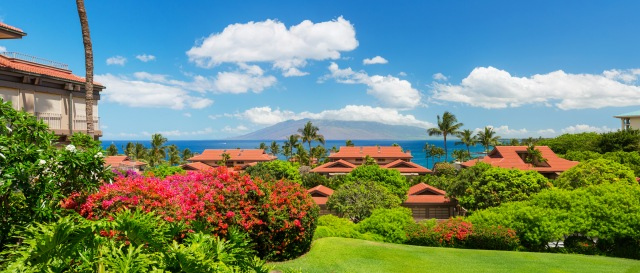 One of THE Best Buys in Wailea~ Wailea Point 2303