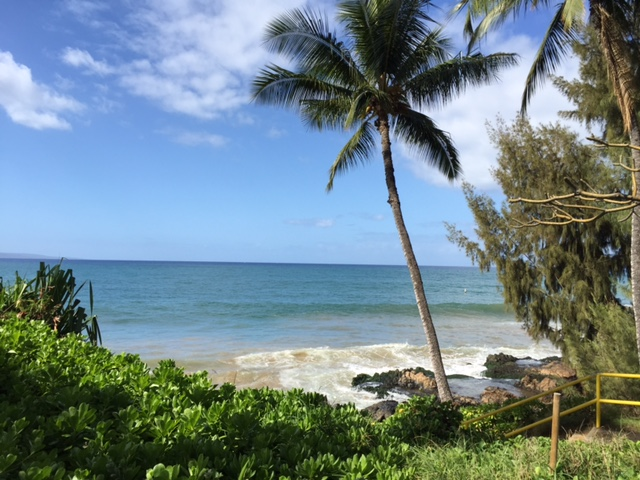 Best condo deals on Maui