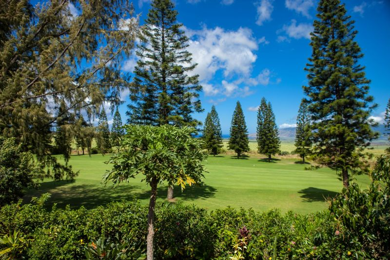 Pukalani Golf Course Homes for sale
